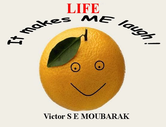Description: D:\Documents\Move\Visions 21IV18\Orange Life.JPG